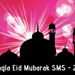 After the Arabic month of Ramadan, Muslim people will enjoy their Eid day with their friends and family. For that reason, they can disclose their gratification to others. Send them best wishes and love each other. That's why today I am here for you, and I am collecting some awesome EID Mubarak SMS for you. You can copy these and send your loved one. So stay with me.