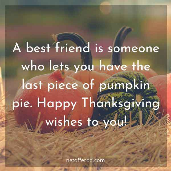A best friend is someone who lets you have the last piece of pumpkin pie. Happy Thanksgiving wishes to you!